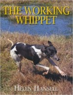 the-working-whippet3