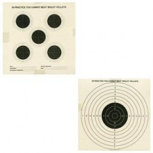 bi9sley_double-sided-targets